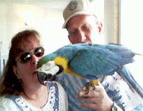 image of a blue and gold macaw with their new human companions